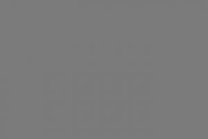 Vestibulum imperdiet rutrum semper. Suspendisse at semper eros. Maecenas finibus odio interdum felis mollis, at euismod mauris tempus. Donec tellus eros, malesuada id aliquam eu, consequat quis orci. Vestibulum ante ipsum primis in faucibus orci luctus et ultrices posuere cubilia Curae;